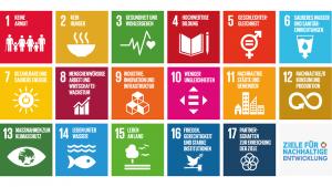 SDG-ziele-fuer-nachhaltige-entwicklung